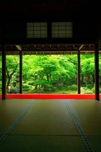 京都・圓光寺 十牛之庭の写真素材 [FYI04677078]