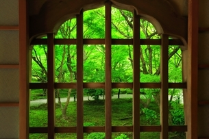 京都・圓光寺 十牛之庭の写真素材 [FYI04677088]