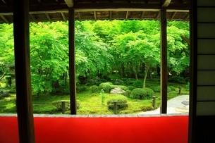 京都・圓光寺 十牛之庭の写真素材 [FYI04677093]