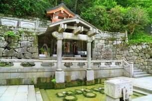 新緑の清水寺 音羽の滝の写真素材 [FYI04677106]