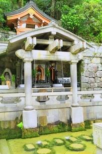 新緑の清水寺 音羽の滝の写真素材 [FYI04677107]
