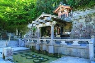 清水寺・音羽の滝の写真素材 [FYI04677145]