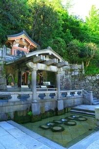 清水寺・音羽の滝の写真素材 [FYI04677146]