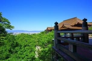 新緑の清水寺・本堂と京都市街の写真素材 [FYI04677160]