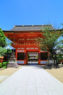 八坂神社 南楼門の写真素材 [FYI04677185]