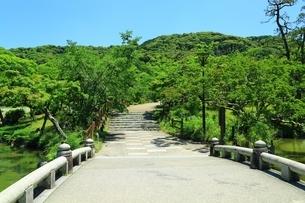 新緑の円山公園 京都の写真素材 [FYI04677203]
