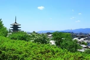 八坂の塔と京都市街の写真素材 [FYI04677206]