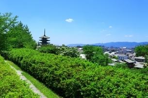 八坂の塔と京都市街の写真素材 [FYI04677207]