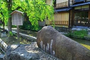 新緑の祇園 かにかくに碑の写真素材 [FYI04677228]