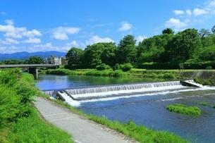 新緑の賀茂川の写真素材 [FYI04677239]