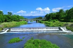新緑の賀茂川の写真素材 [FYI04677241]