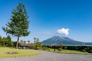 鹿児島県、仙厳園から望む桜島の写真素材 [FYI04677290]
