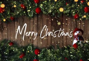 クリスマスの雪だるまのかわいいオーナメントの背景デザインの写真素材 [FYI04677359]