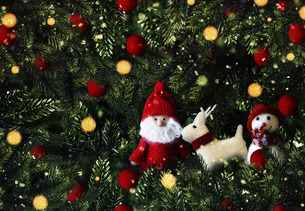 クリスマスのサンタクロースとトナカイのかわいいオーナメントの背景デザインの写真素材 [FYI04677363]