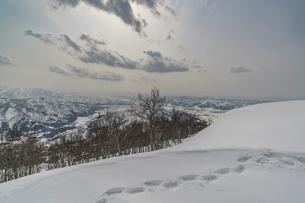 スキー場の雪景色の写真素材 [FYI04677463]