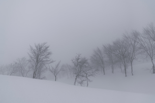 スキー場の雪景色の写真素材 [FYI04677470]