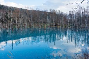青空を映す秋の青い池の写真素材 [FYI04677481]