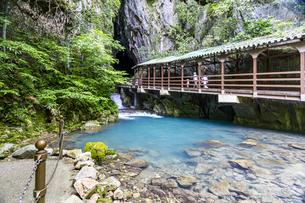 日本最大規模の鍾乳洞 秋芳洞の入口の写真素材 [FYI04678409]