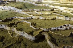 日本最大規模の鍾乳洞 秋芳洞の百枚皿の写真素材 [FYI04678413]