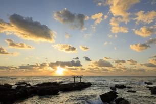 朝の大洗海岸と神磯の鳥居の写真素材 [FYI04678439]