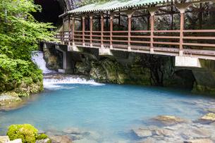 日本最大規模の鍾乳洞 秋芳洞の入口の写真素材 [FYI04678451]