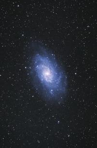 さんかく座の渦巻き銀河の写真素材 [FYI04678539]