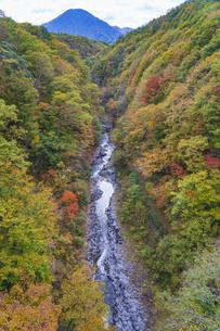初秋の中津川渓谷の写真素材 [FYI04678911]