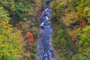 初秋の中津川渓谷の写真素材 [FYI04678913]