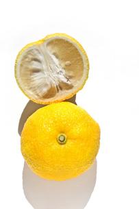 ゆず 柚子の写真素材 [FYI04679032]