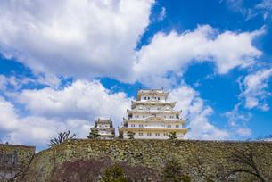 青空と姫路城の写真素材 [FYI04679709]