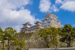 青空と姫路城の写真素材 [FYI04679715]