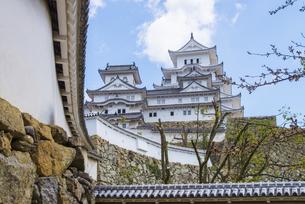 東方下土塀からの姫路城の写真素材 [FYI04679716]