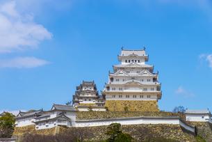 青空と姫路城の写真素材 [FYI04679722]