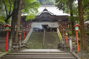 出流山満願寺の写真素材 [FYI04679765]