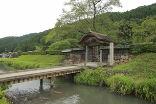 一乗谷朝倉氏遺跡唐門の写真素材 [FYI04679807]