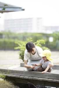 小さな橋で遊ぶ子供と女性の保育士の写真素材 [FYI04679885]