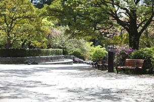 宮城県 勾当台公園の写真素材 [FYI04680014]