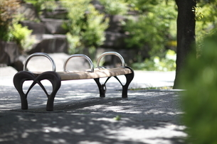 公園のベンチの写真素材 [FYI04680023]