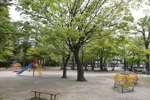 宮城県 勝山公園の写真素材 [FYI04680036]