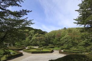 宮城県 台原森林公園の写真素材 [FYI04680063]