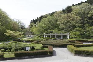 宮城県 台原森林公園の写真素材 [FYI04680066]