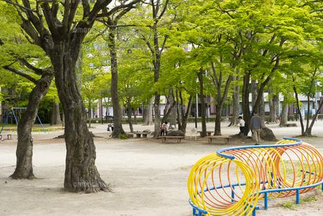宮城県 勝山公園の写真素材 [FYI04680189]