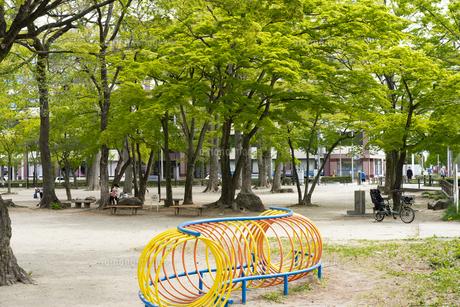 宮城県 勝山公園の写真素材 [FYI04680192]