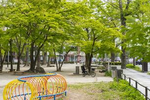 宮城県 勝山公園の写真素材 [FYI04680197]