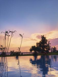 南国 プール 夕景の写真素材 [FYI04680333]