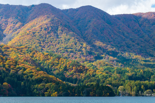 湖と山の紅葉の写真素材 [FYI04680459]