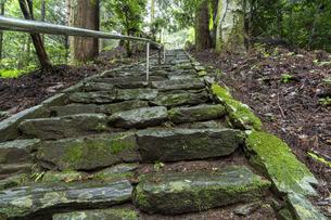 軍刀利神社の石段の写真素材 [FYI04680508]