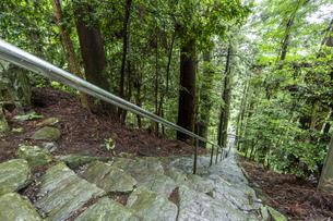 軍刀利神社の石段の写真素材 [FYI04680509]