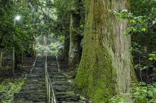 軍刀利神社の石段の写真素材 [FYI04680518]