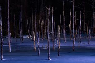 ライトアップされた冬の青い池の写真素材 [FYI04680756]